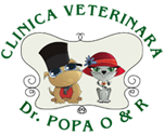 Veterinary Clinic Dr. Popa O & R